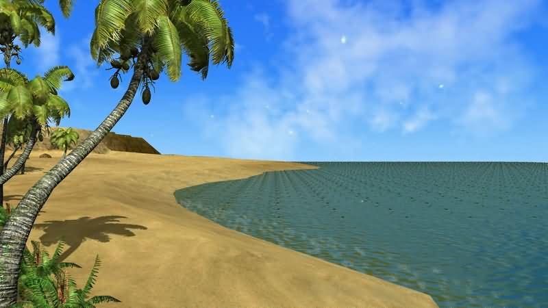大海沙滩椰子树视频素材