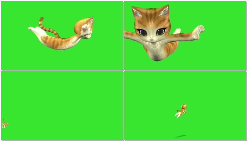 绿屏抠像欢快的卡通小猫视频素材