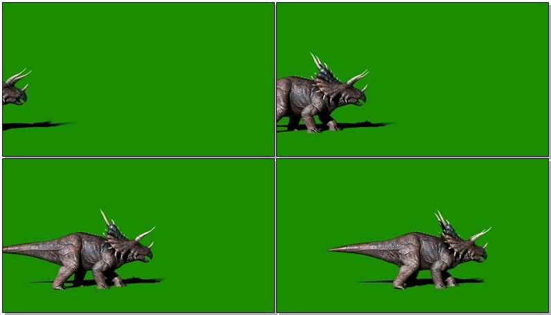绿屏抠像恐龙三角龙视频素材
