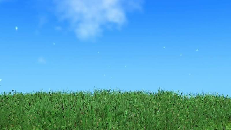 蓝天白云被风吹拂的草地视频素材