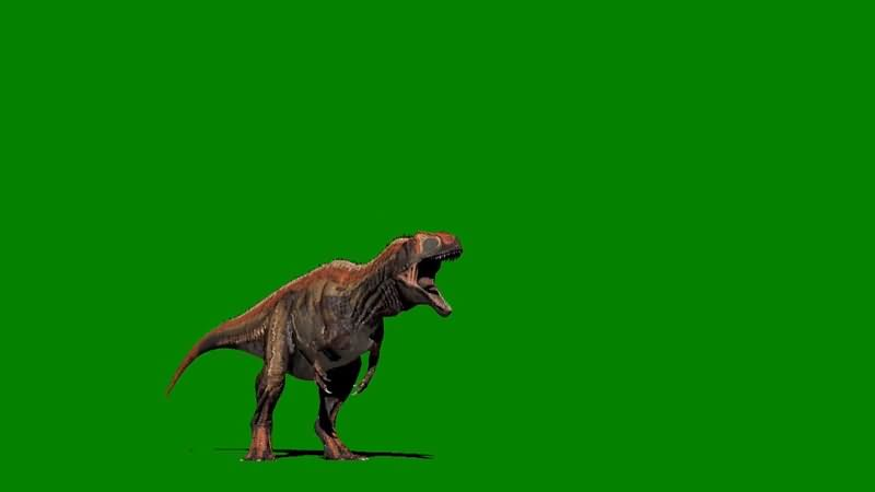 绿屏抠像发怒嚎叫的恐龙视频素材