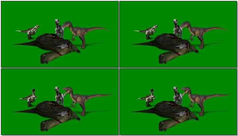 绿屏抠像吃食的恐龙视频素材