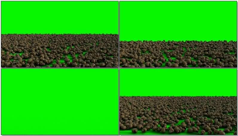 绿屏抠像一地的骷髅头视频素材
