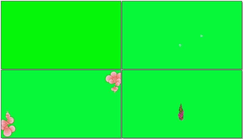 绿屏抠像鲜花组成的字母图案视频素材