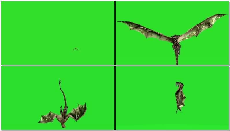 绿屏抠像飞龙怪兽视频素材