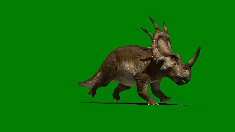 绿屏抠像奔跑的野牛龙恐龙视频素材