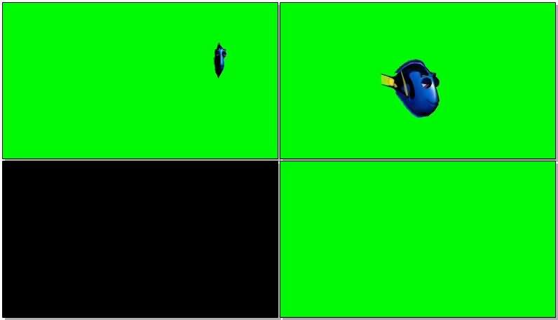 绿屏抠像海底总动员小鱼多莉视频素材