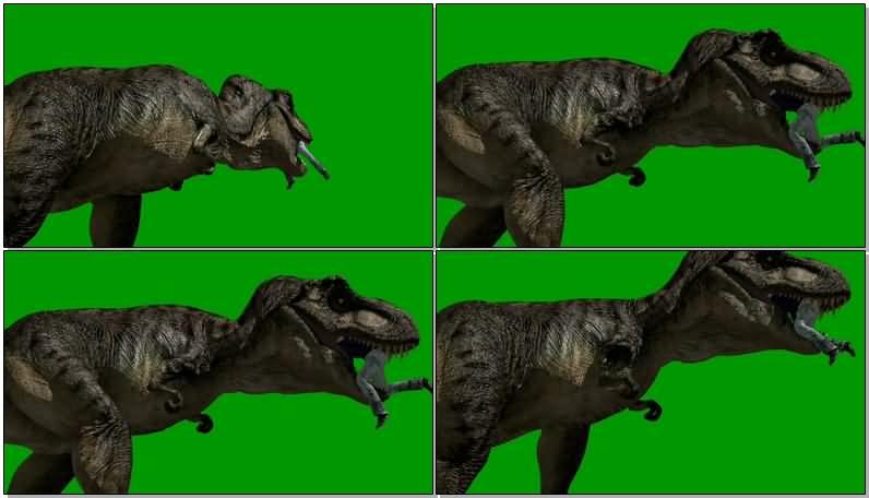 绿屏抠像恐龙吃人视频素材