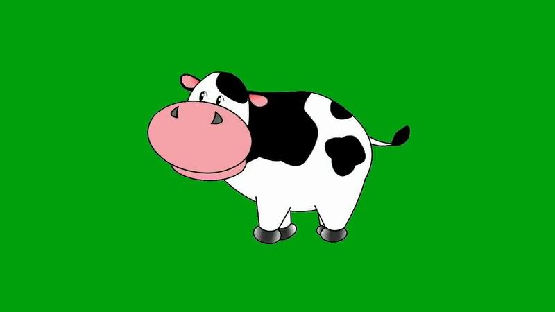 绿屏抠像卡通奶牛.jpg