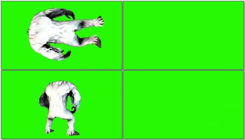 绿屏抠像深山雪怪视频素材