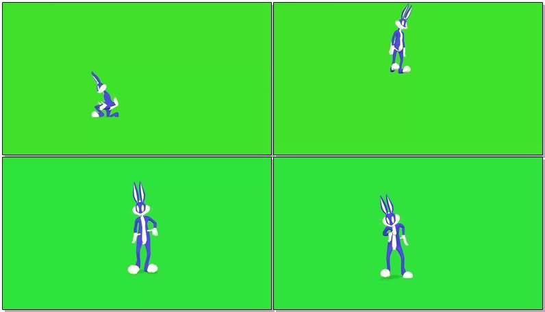 绿屏抠像兔八哥视频素材