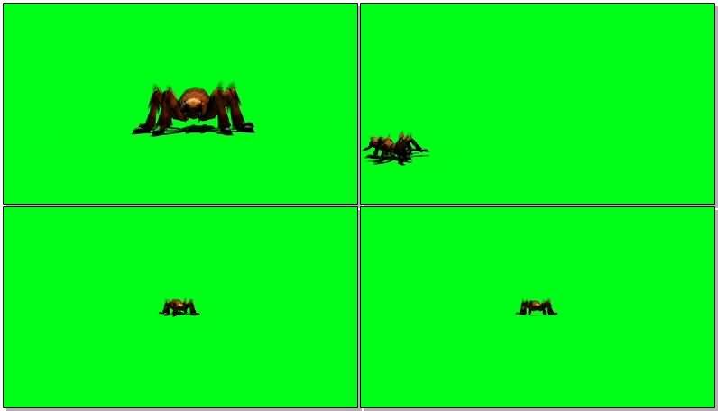绿屏抠像巨型蜘蛛视频素材