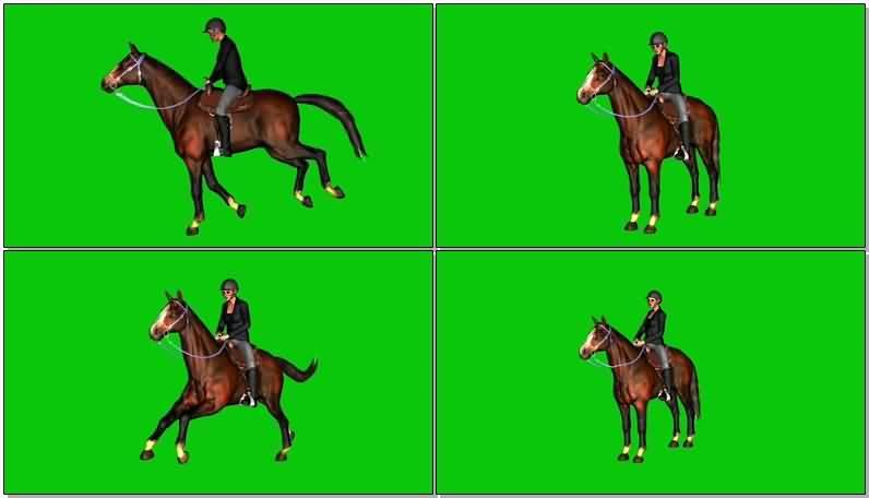 绿屏抠像骑马的女骑手视频素材