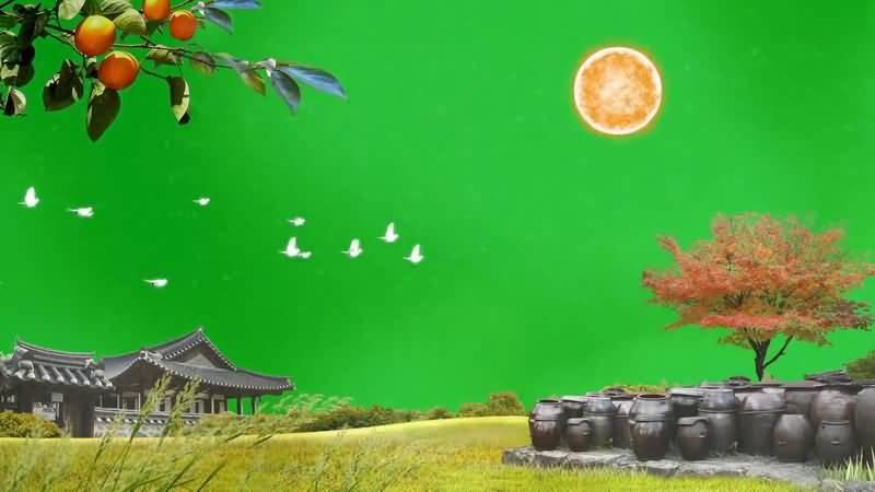 绿屏抠像住宅建筑自然风景视频素材