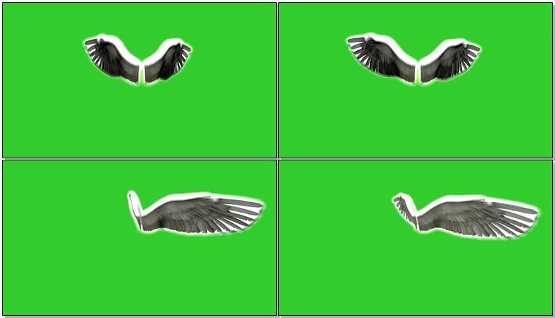 绿屏抠像扇动的闪光天使翅膀视频素材