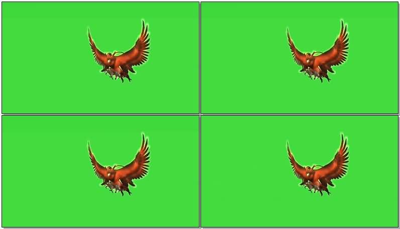 绿屏抠像飞行的火鸟视频素材