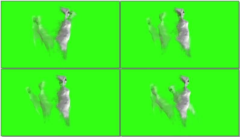 绿屏抠像白色幽灵视频素材