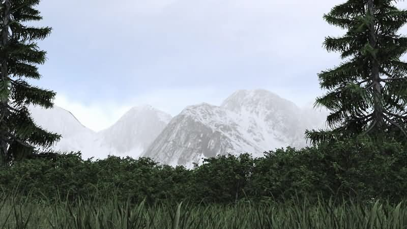 雪山草地松树视频素材