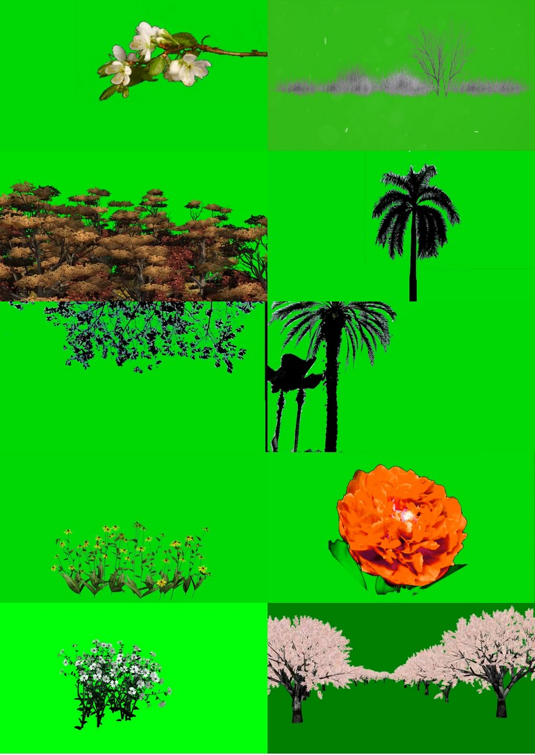 绿幕抠像植物视频素材打包1.jpg
