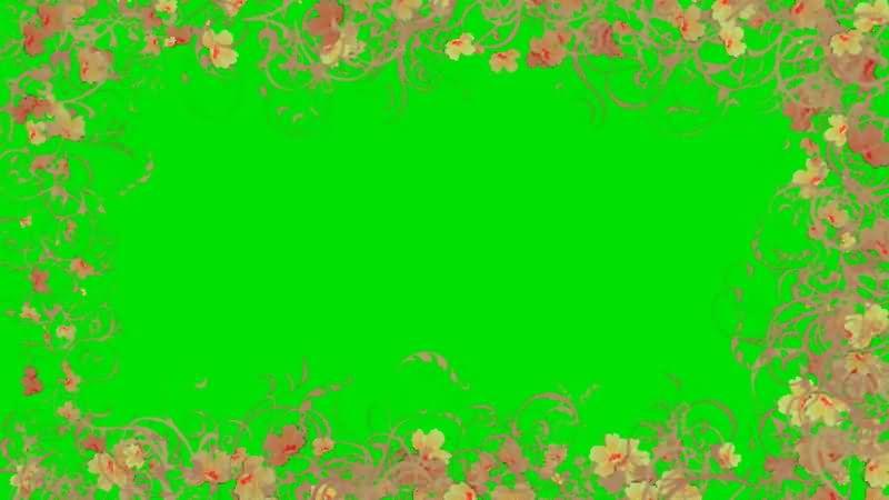 绿屏抠像花朵边框视频素材