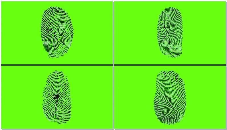 [4K]绿屏抠像指纹视频素材