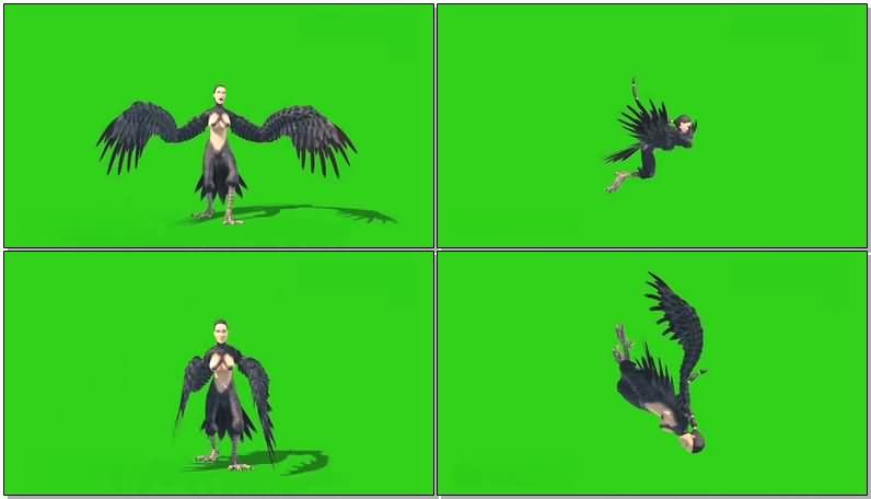 绿屏抠像鸟人视频素材