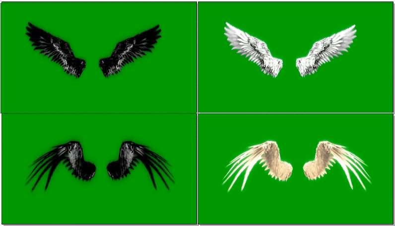 绿屏抠像天使恶魔翅膀视频素材