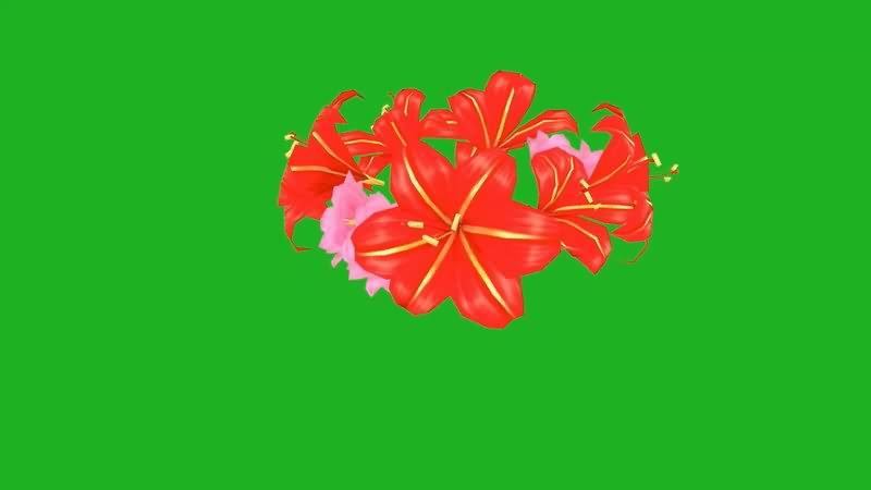 绿屏抠像花环视频素材