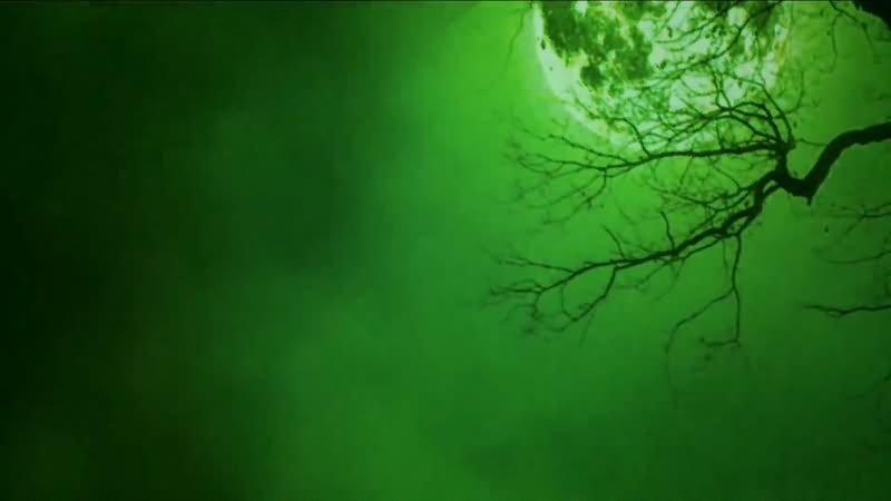 绿屏抠像恐怖满月夜晚视频素材
