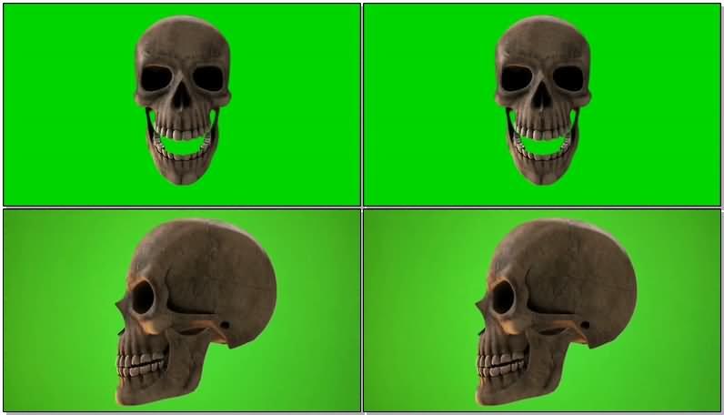 绿屏抠像骷髅头视频素材