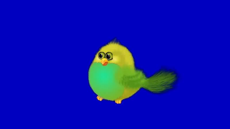 绿屏抠像卡通小鸟视频素材