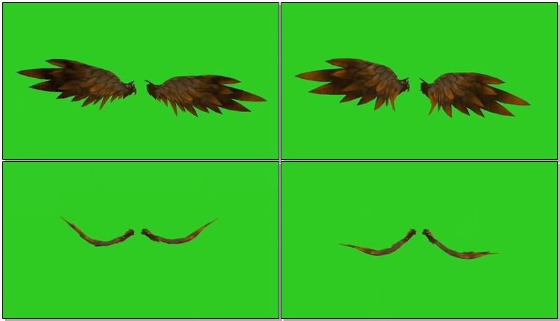 绿屏抠像扇动的翅膀视频素材