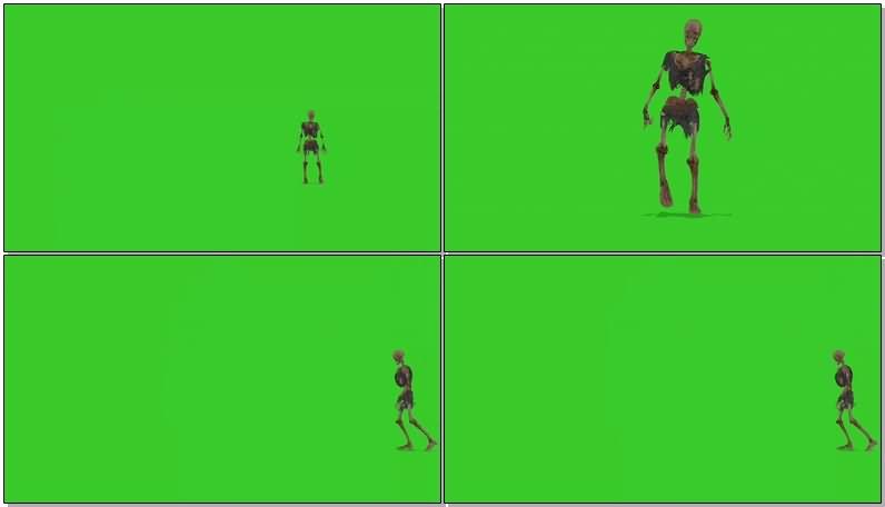绿屏幕抠像走路的骷髅视频素材