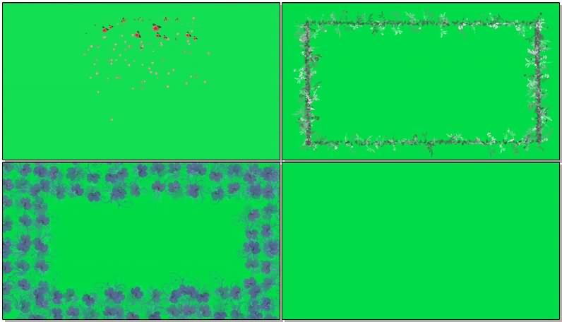 绿幕视频素材花卉