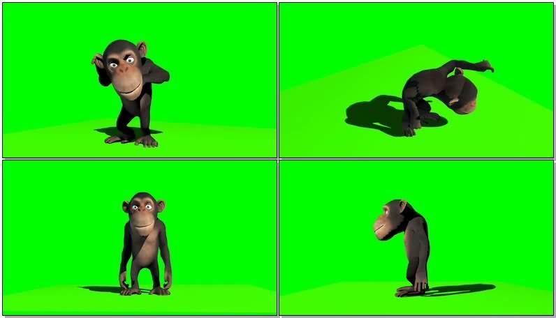 绿幕视频素材跳舞的猴子