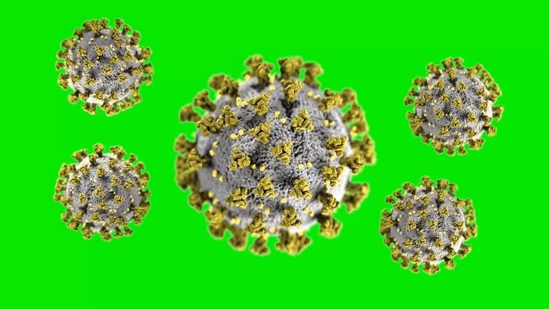 绿幕视频素材病毒