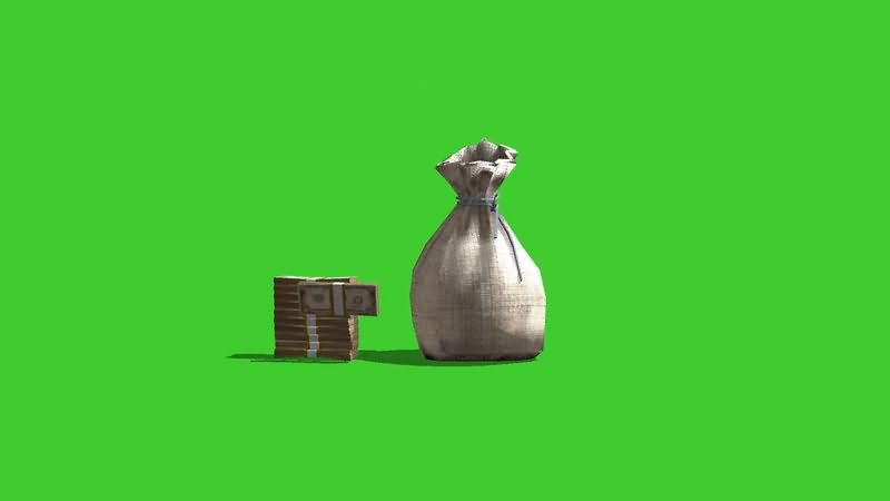 绿幕视频素材钱袋