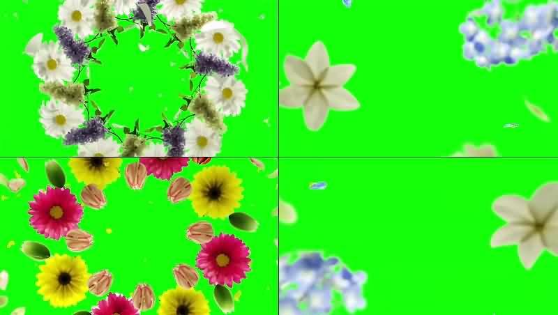 绿幕视频素材花环
