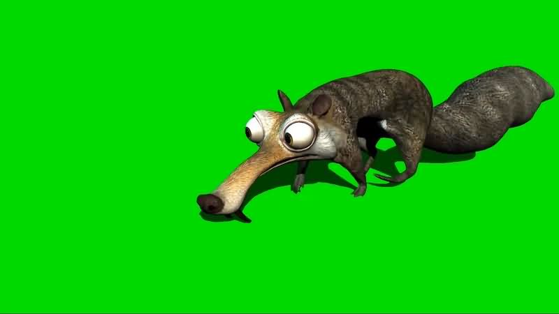绿幕视频素材鼠奎特