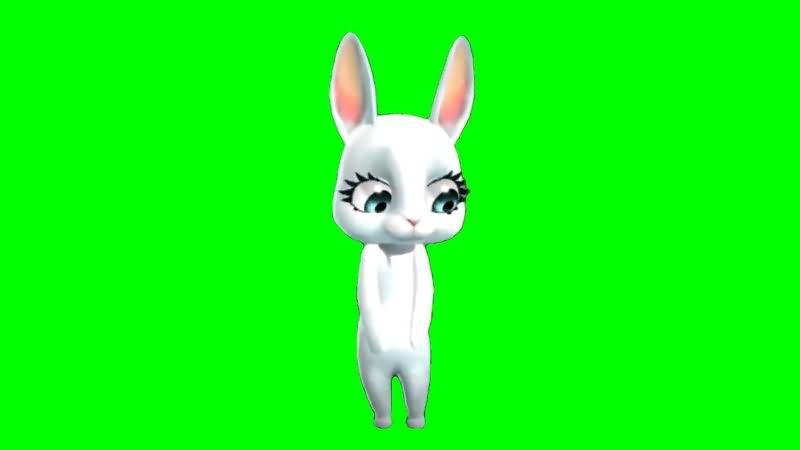 绿幕视频素材卡通兔