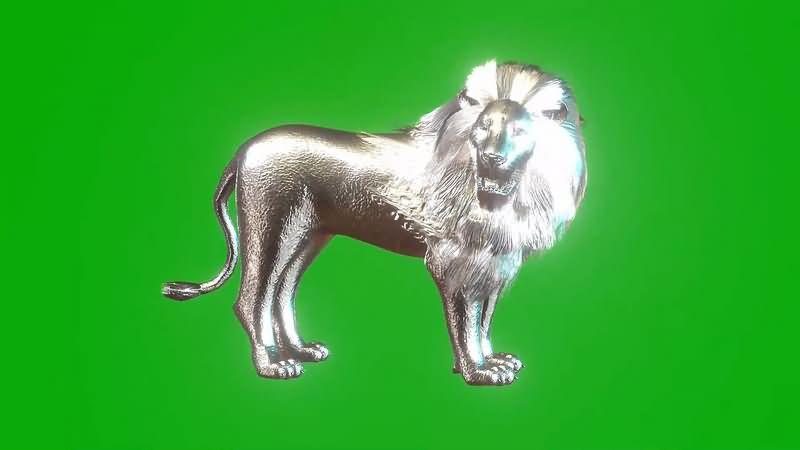 绿幕视频素材银狮