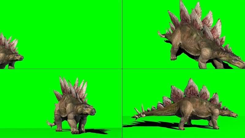 绿幕视频素材剑龙