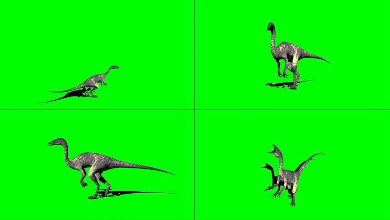 绿幕视频素材秀颌龙.jpg