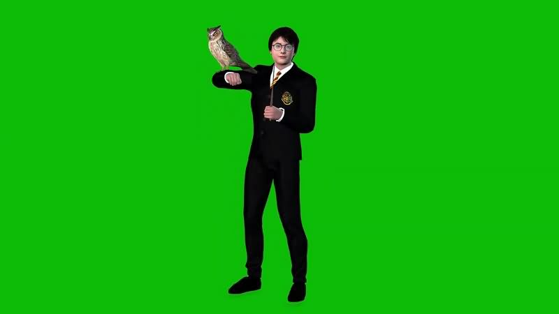 绿幕视频素材哈利波特