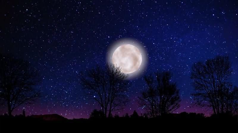 满月夜景视频素材