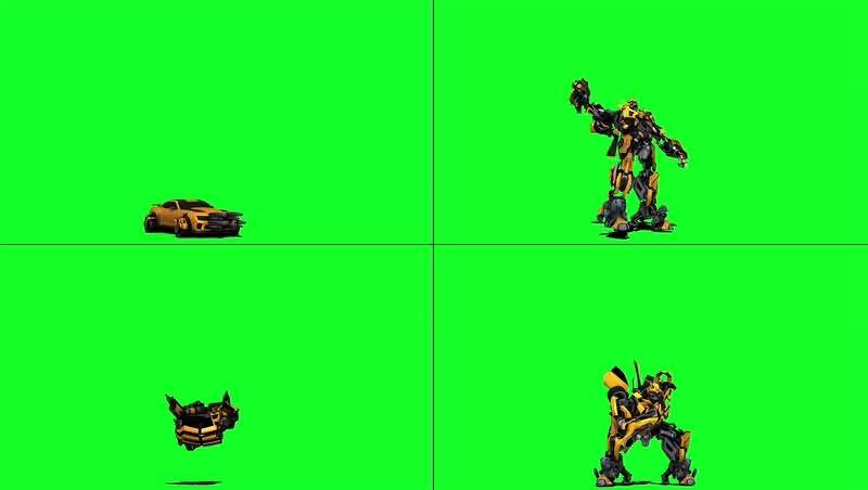 绿幕视频素材大黄蜂