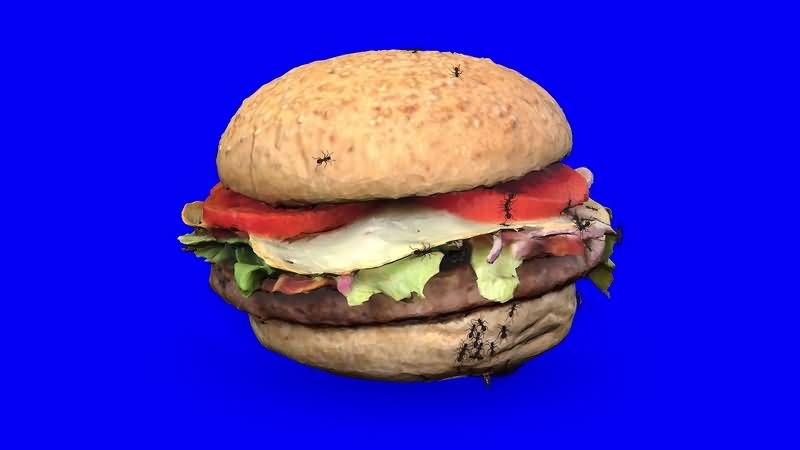 绿幕视频素材汉堡