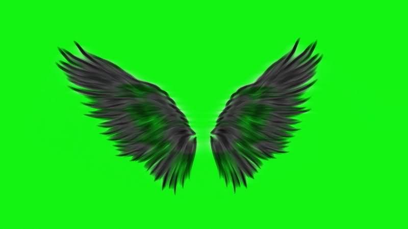 绿幕视频素材恶魔翅膀