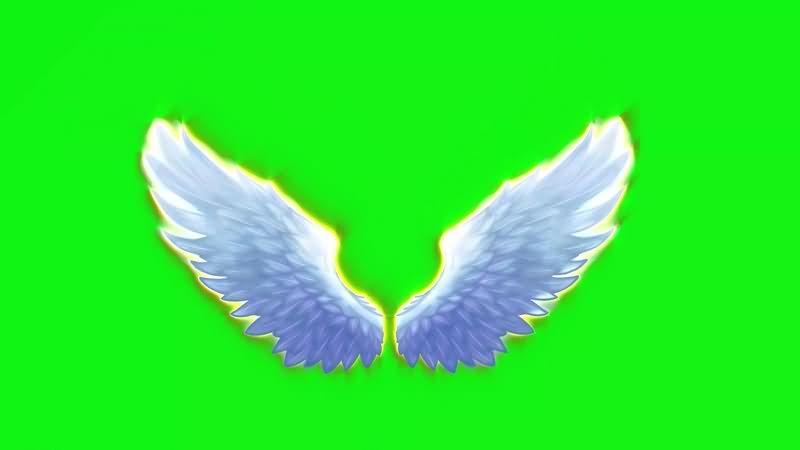 绿幕视频素材天使翅膀