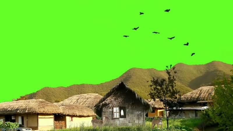 绿幕视频素材村庄